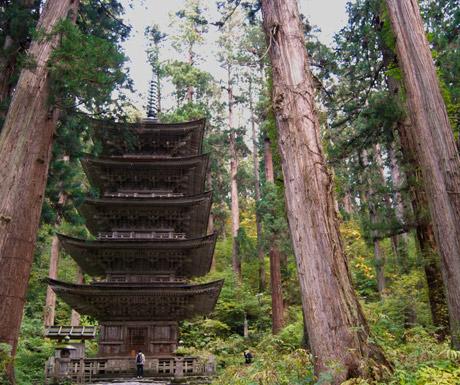 Mount-Haguros-forest-pagoda