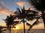 新しい記事: Hawaiiで過ごす最高の休日〜Honolulu〜