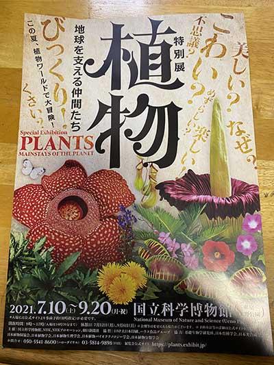 前の記事: 植物に心はあるのか? ―国立科学博物館「特別展・植物」に行って―